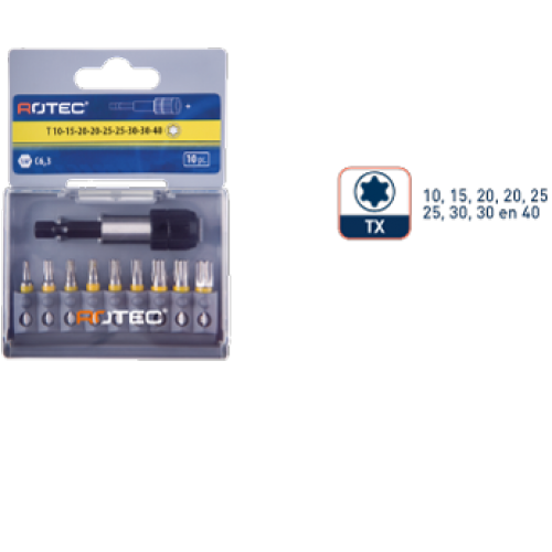 10 DLG. 1/4 BITSET 25 MM TORX + QUICK-LOCKHOUDER